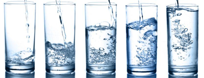 Wasser Marsch Blogbeitrag Stephanie Lutrelli